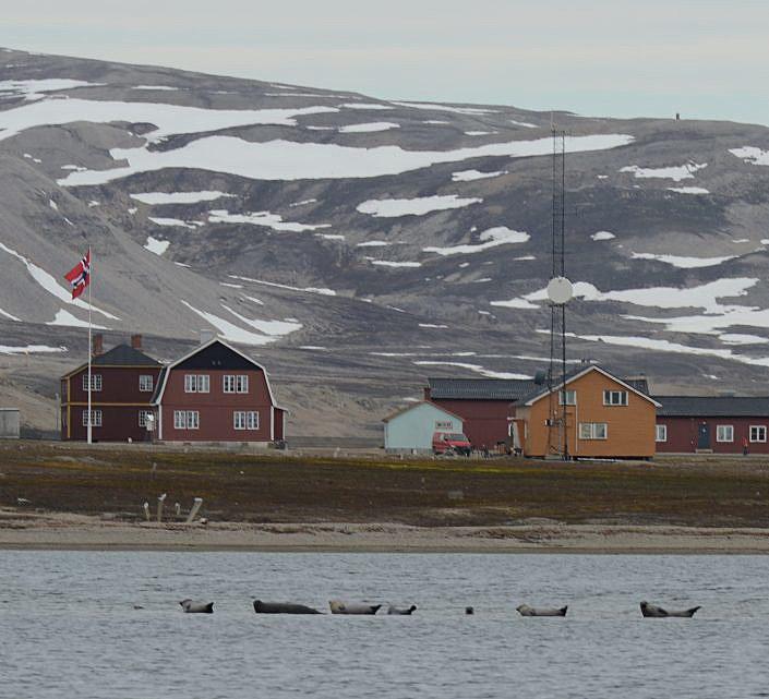 Steinkobber med bebyggelse i bakgrunnen