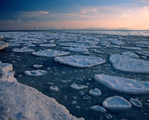 isflak og havis