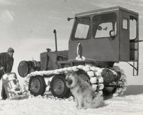 historisk bilde av hund som sitter foran en bletevogn