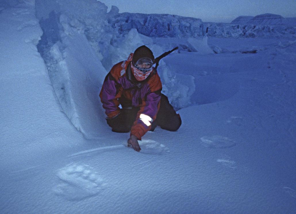 person på huk undersøker isbjørnspor i snøen