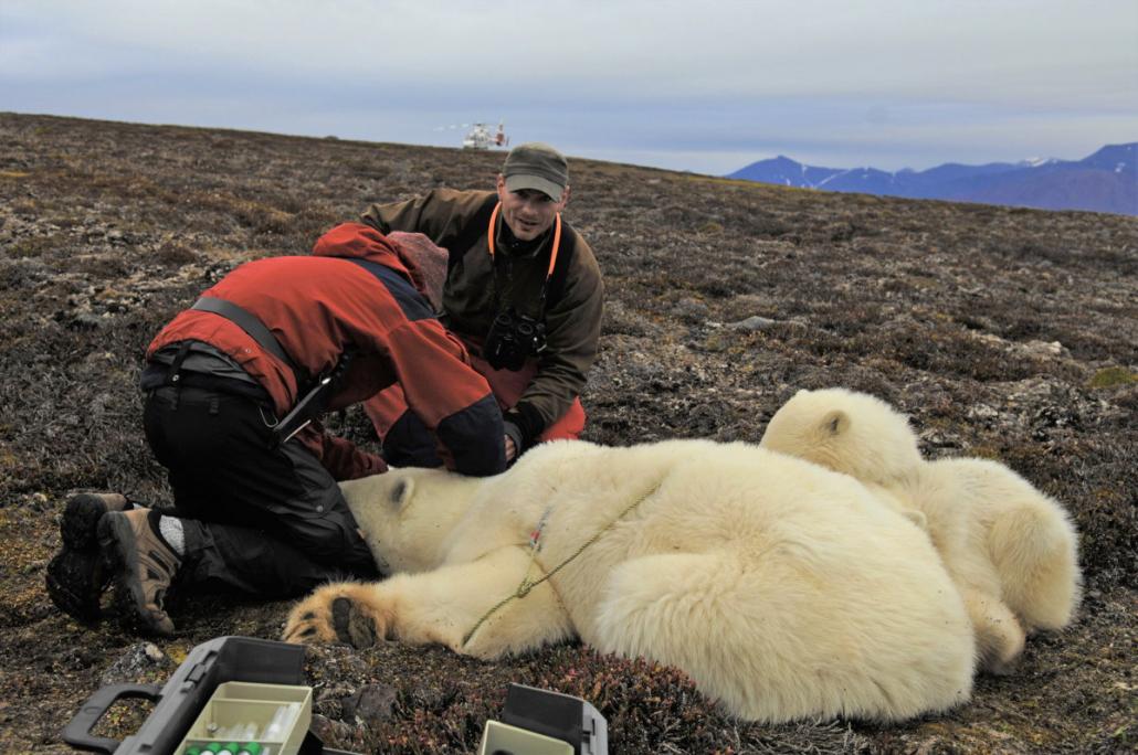 to man med en isbjørn